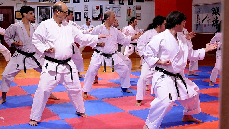 Actualización técnica de karate do